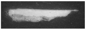 General image of the micro-sample by optical microscopy