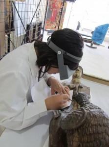 Presa de micromostres per part de la de la química del museu, Núria Oriols