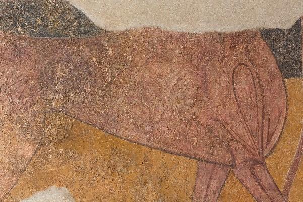 Detalle del lomo agrietado. Fotografía: Área de Restauración