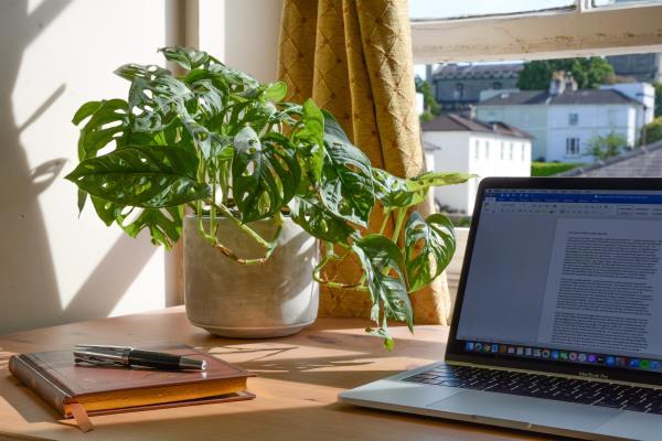 La nova realitat de treballar des de casa