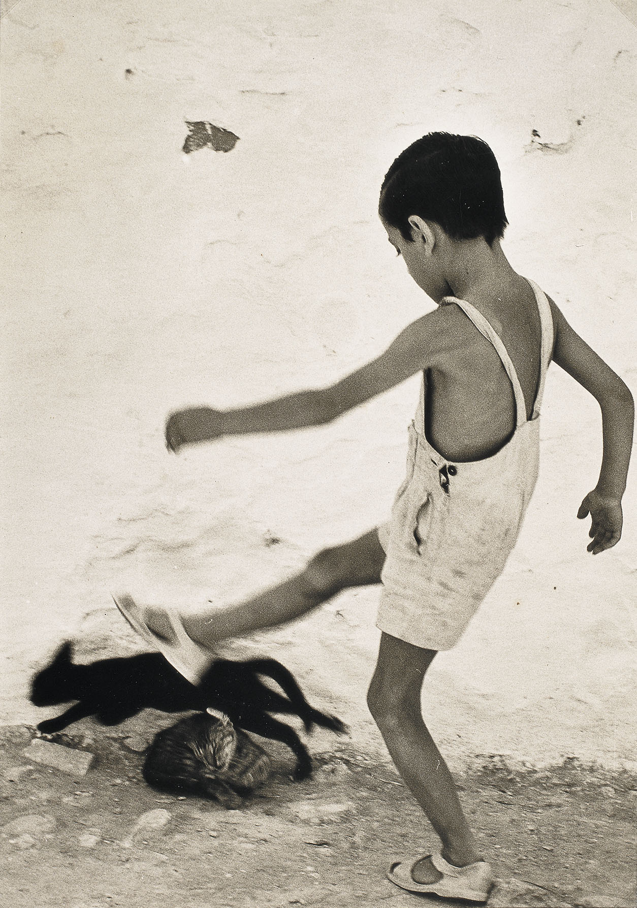 Oriol Maspons, Boy in Ibiza, 1954