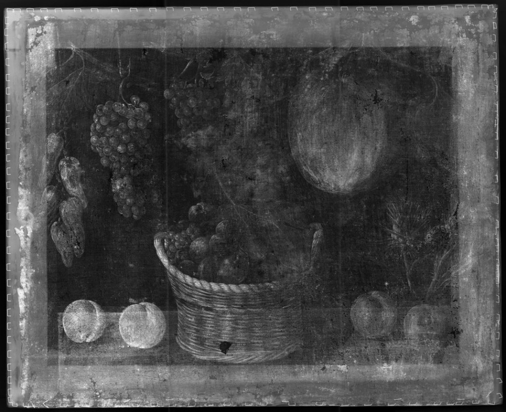 X-rays of Still Life with Basket of Fruits, Pumpkin and Grapes, Mestre de Stirling-Maxwell