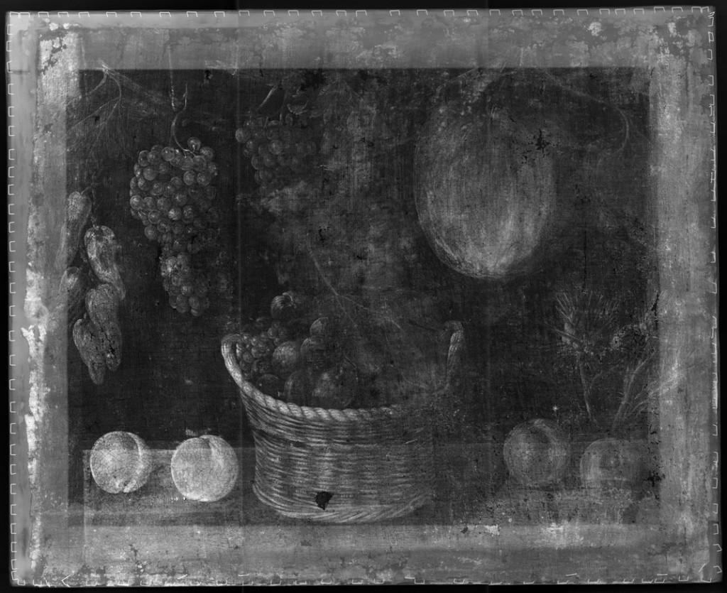 Radiografía de la obra  Bodegón con cesta de frutas, calabaza y uvas del Maestro de Stirling-Maxwell
