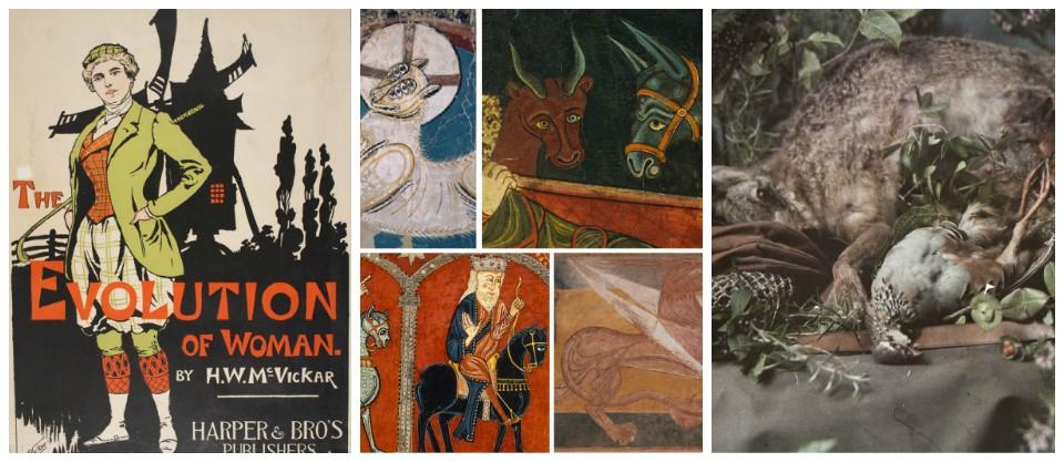 collage-blog