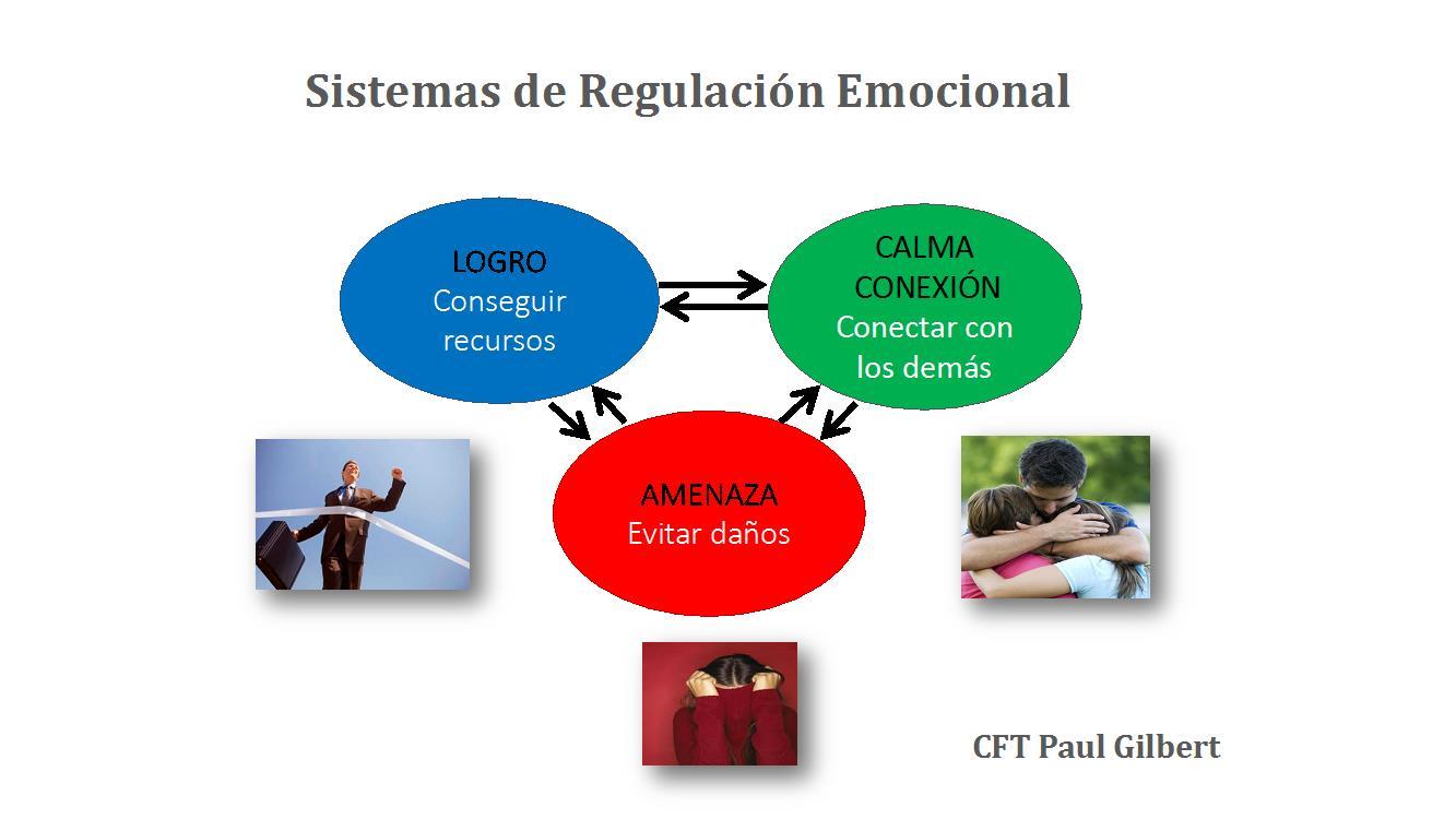 Sistemes de regulació emocional